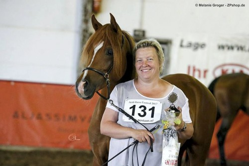 2017 Arab Horse Festival - Collier Rubin and smiling owner Anita Scheele - photo by Melanie Groger