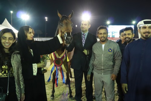 2018 2nd International Arabian Horse Show - photo by Mahmood Nasser