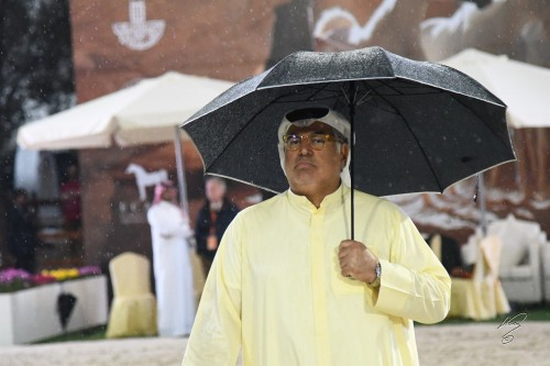 2018 Gulf Straight Egyptian Arabian Cup - photo by Jan Kan