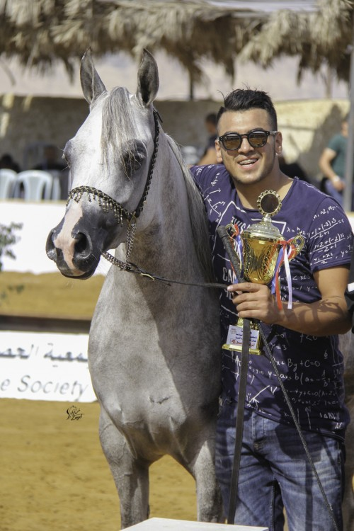 Palestine National Arabian Horse Show - photo Zayd Mostafa