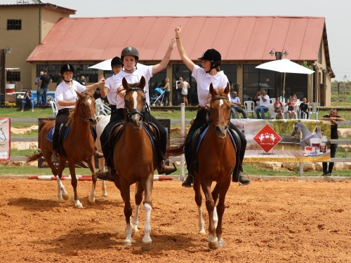 The Israeli Arabian Horse Festival 2018 - photo by Jill Crols