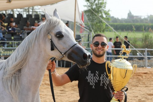 2018 Israel Arab Horse Society Galilee Show - impressions by Michael Steurs
