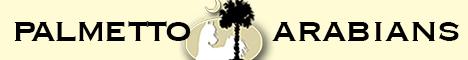 Palmetto Arabians