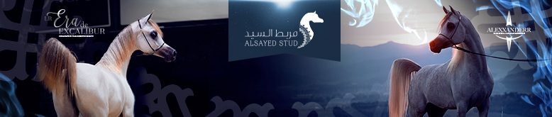 Alsayed - January