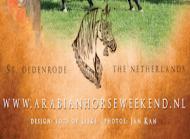 Arabian Horse Weekend - International C-Show