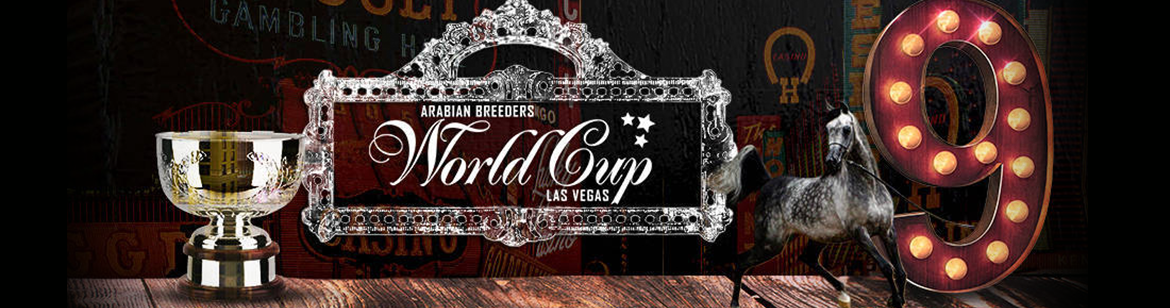 Arabian Breeders World Cup Arabianhorselive Com