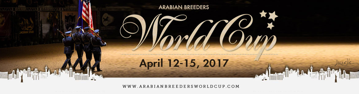 146 Gheisha Arabian Breeders World Cup