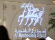 Al Rashediah Stud - Waho - Gala Evening