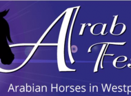 Arab Horse Festival - AJF Amateur Challenge Germany