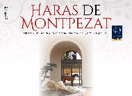 Haras de Montpezat - Open Day