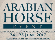 Arabian Horse Event - Manerbio