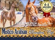 Mistico Arabian Breeders' Cup
