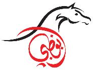 Abu Dhabi - Int. Arabian Horse Championship
