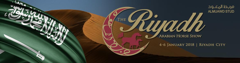 Riyadh - Arabian Horse Show