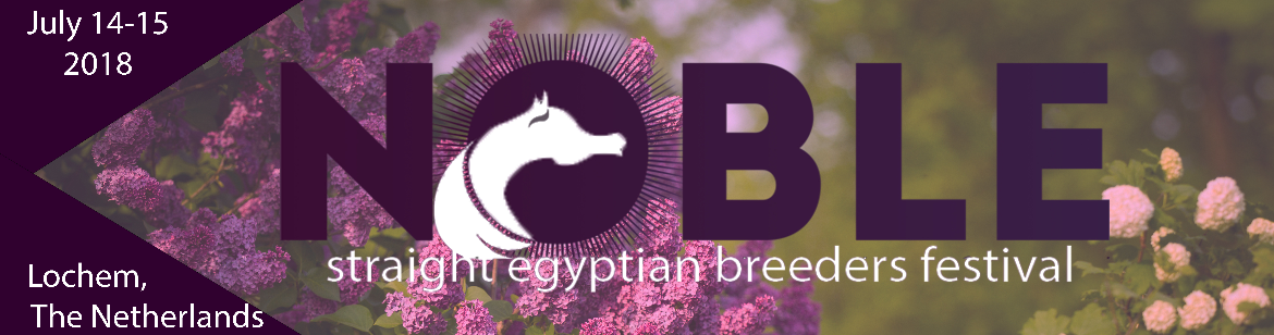 Noble Straight Egyptian Breeders Festival