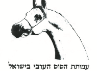 Israel Arab Horse Society's - Spring Show