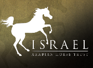 The Israeli Arabian Horse Festival 2018