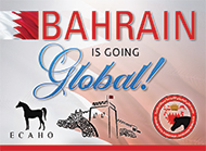 The 3rd International Arabian Show B