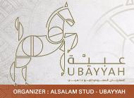 Saudi Arabian Horse Festival