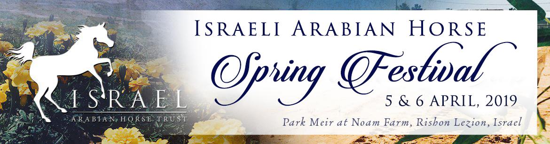 Israeli Arabian Horse Spring Festival