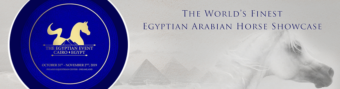 The Egyptian Event - Cairo