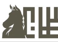 Prince Sultan Arabian Horse Festival