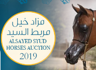 AlSayed Stud 4th Horses Auction 2019