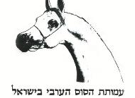Israel Arab Horse Society - Spring Show