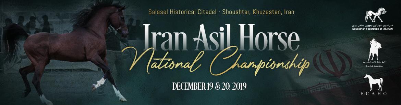 Iran Asil Horse National Championship